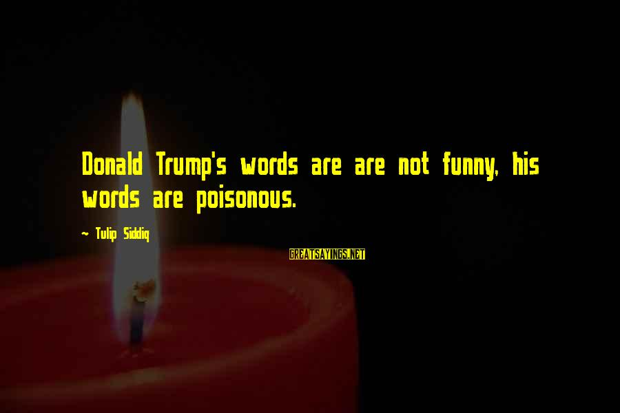 Tulip Sayings By Tulip Siddiq: Donald Trump's words are are not funny, his words are poisonous.