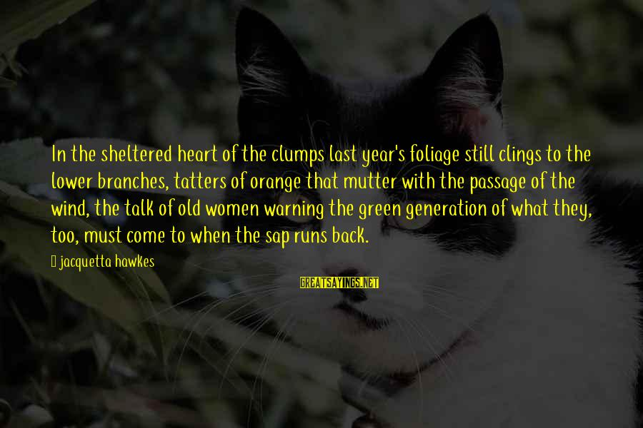 Typical English Sayings By Jacquetta Hawkes: In the sheltered heart of the clumps last year's foliage still clings to the lower