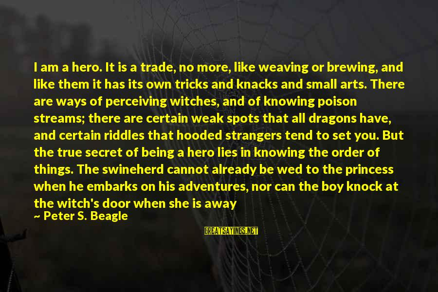 Undetectable Sayings By Peter S. Beagle: I am a hero. It is a trade, no more, like weaving or brewing, and