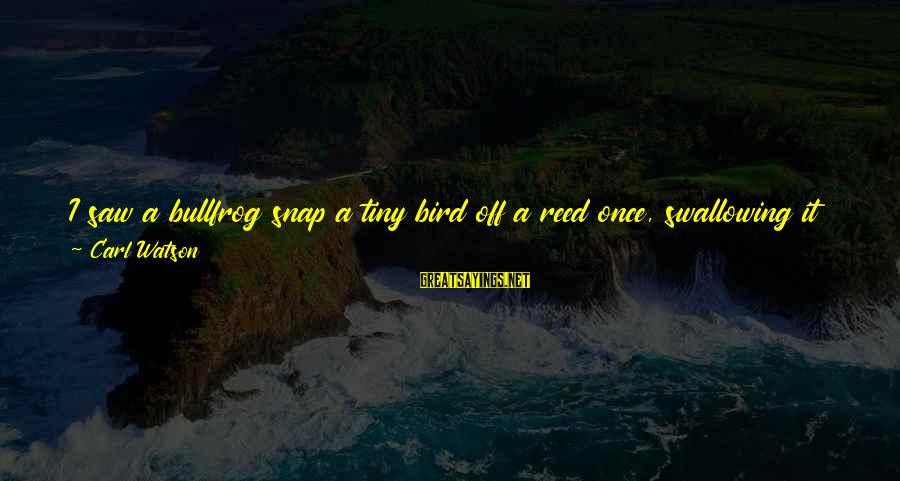 Unknown Truth Sayings By Carl Watson: I saw a bullfrog snap a tiny bird off a reed once, swallowing it just