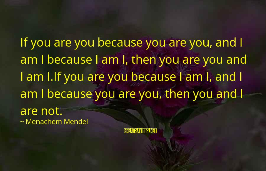 Unmelting Sayings By Menachem Mendel: If you are you because you are you, and I am I because I am