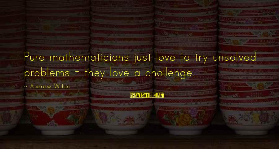 Unsolved Sayings By Andrew Wiles: Pure mathematicians just love to try unsolved problems - they love a challenge.