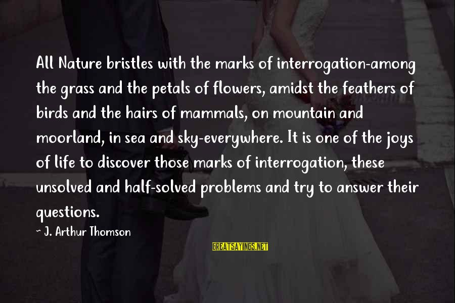 Unsolved Sayings By J. Arthur Thomson: All Nature bristles with the marks of interrogation-among the grass and the petals of flowers,