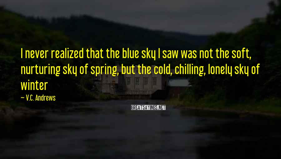 V.C. Andrews Sayings: I never realized that the blue sky I saw was not the soft, nurturing sky