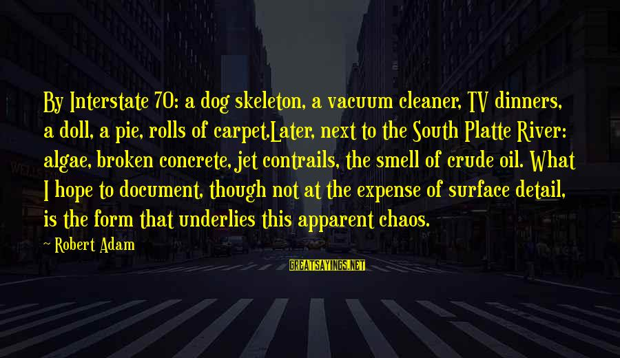 Vacuum Cleaner Sayings By Robert Adam: By Interstate 70: a dog skeleton, a vacuum cleaner, TV dinners, a doll, a pie,