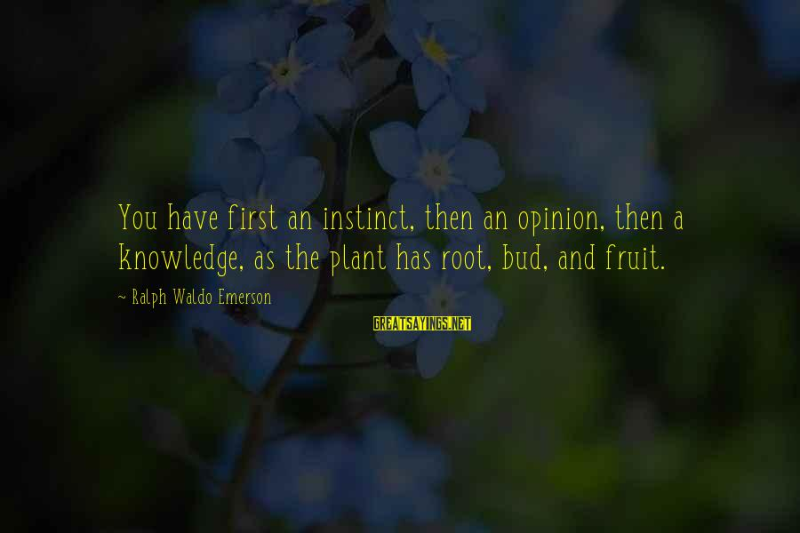 Velen Sayings By Ralph Waldo Emerson: You have first an instinct, then an opinion, then a knowledge, as the plant has