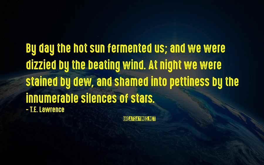Very Hot Sun Sayings By T.E. Lawrence: By day the hot sun fermented us; and we were dizzied by the beating wind.