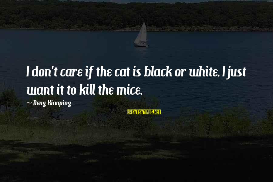 Vicious Pbs Sayings By Deng Xiaoping: I don't care if the cat is black or white, I just want it to