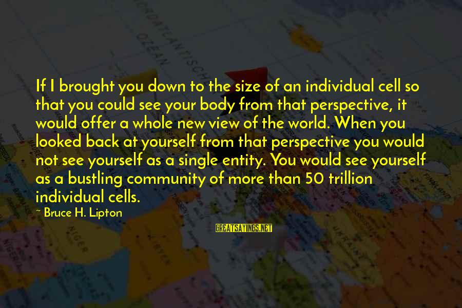 Views Of The World Sayings By Bruce H. Lipton: If I brought you down to the size of an individual cell so that you