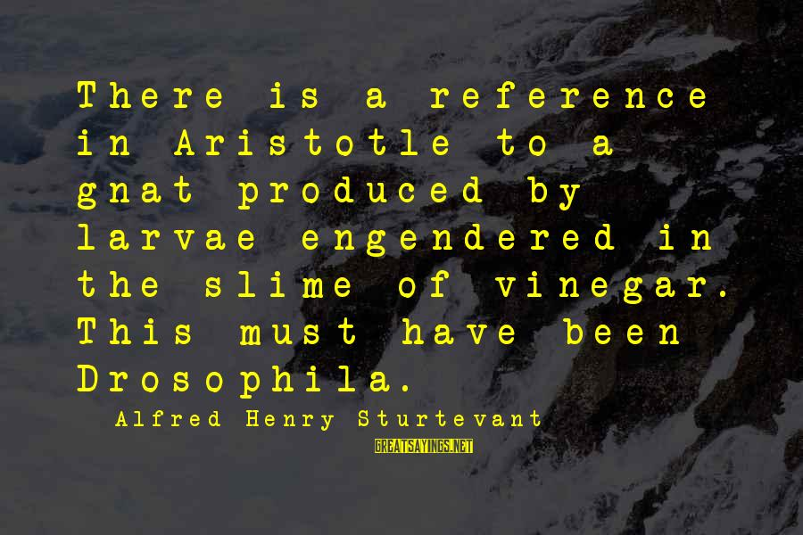 Vinegar Sayings By Alfred Henry Sturtevant: There is a reference in Aristotle to a gnat produced by larvae engendered in the
