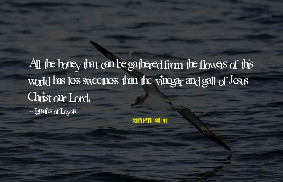 Vinegar Sayings By Ignatius Of Loyola: All the honey that can be gathered from the flowers of this world has less