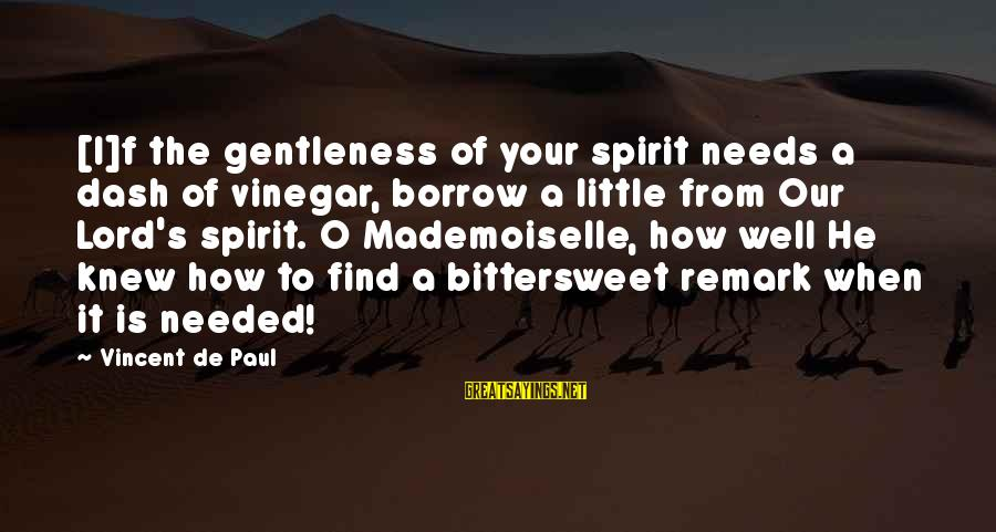 Vinegar Sayings By Vincent De Paul: [I]f the gentleness of your spirit needs a dash of vinegar, borrow a little from