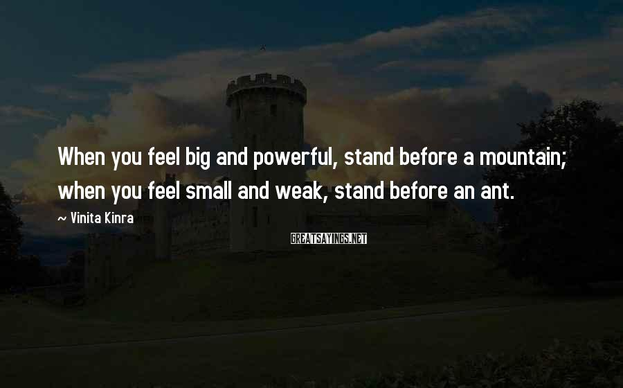 Vinita Kinra Sayings: When you feel big and powerful, stand before a mountain; when you feel small and