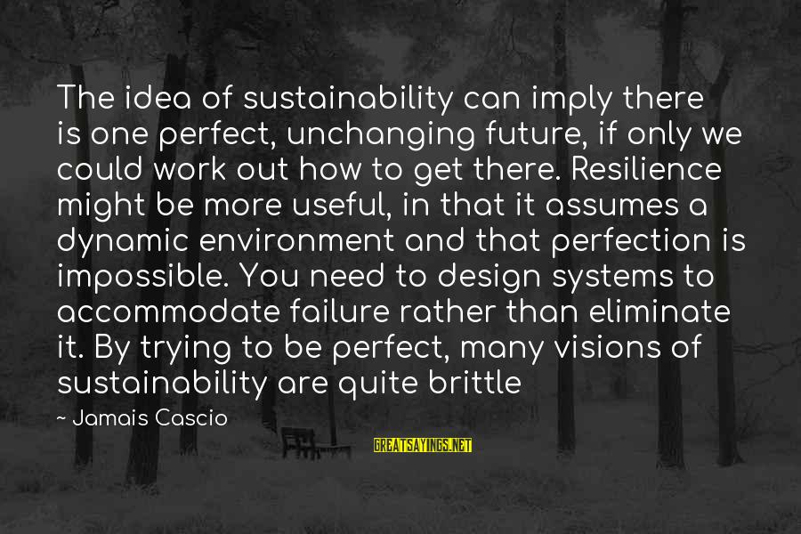 Visions Of The Future Sayings By Jamais Cascio: The idea of sustainability can imply there is one perfect, unchanging future, if only we