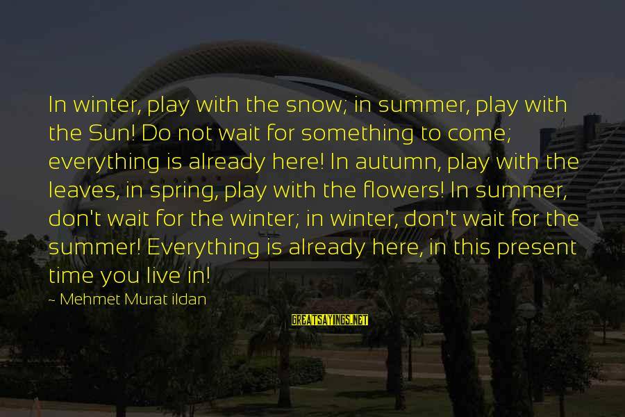 Wait For Sayings By Mehmet Murat Ildan: In winter, play with the snow; in summer, play with the Sun! Do not wait