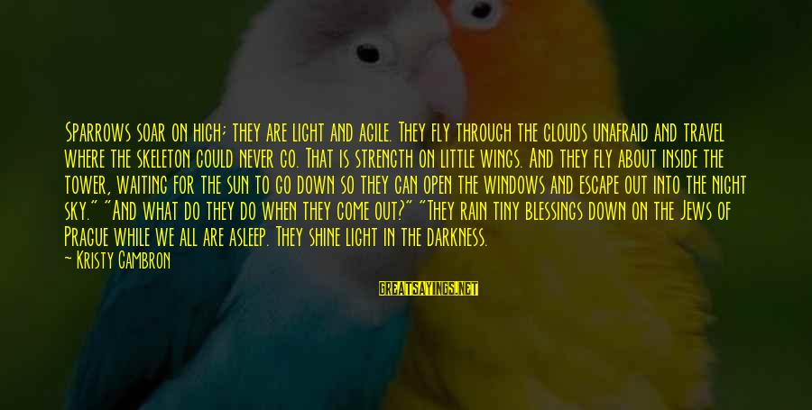 Waiting All Night Sayings By Kristy Cambron: Sparrows soar on high; they are light and agile. They fly through the clouds unafraid