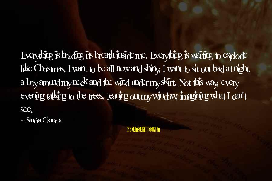 Waiting All Night Sayings By Sandra Cisneros: Everything is holding its breath inside me. Everything is waiting to explode like Christmas. I