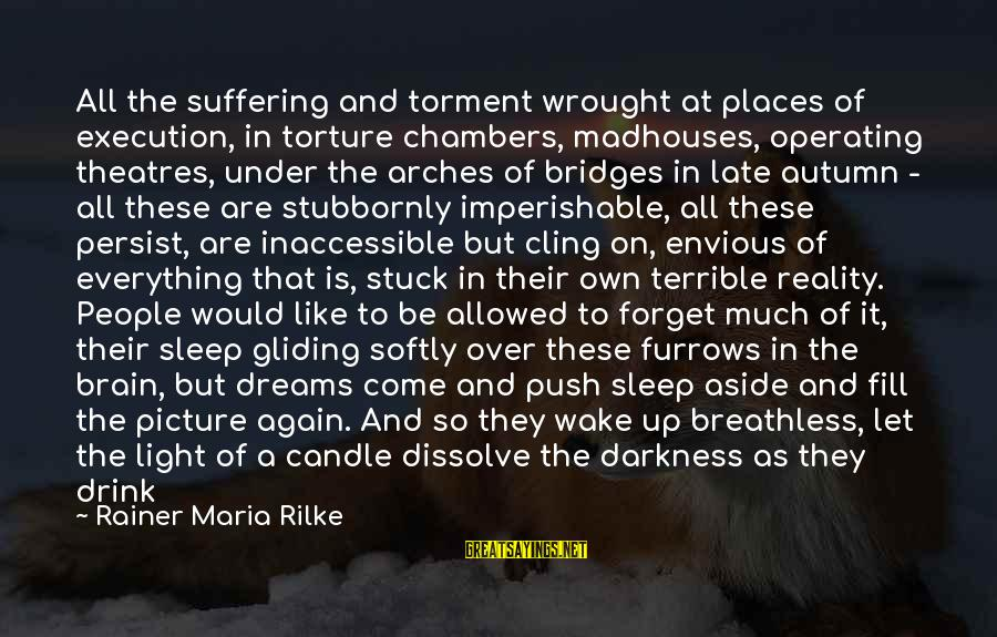Wake Up To Reality Sayings By Rainer Maria Rilke: All the suffering and torment wrought at places of execution, in torture chambers, madhouses, operating