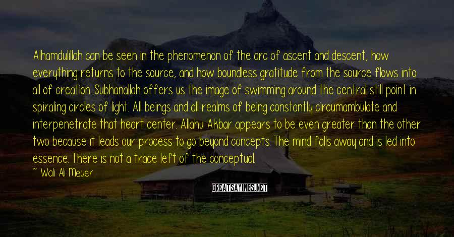 Wali Ali Meyer Sayings: Alhamdulillah can be seen in the phenomenon of the arc of ascent and descent, how