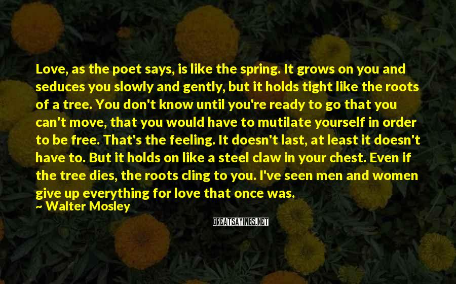 Walter Mosley Sayings: Love, as the poet says, is like the spring. It grows on you and seduces