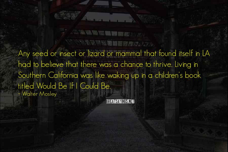 Walter Mosley Sayings: Any seed or insect or lizard or mammal that found itself in LA had to