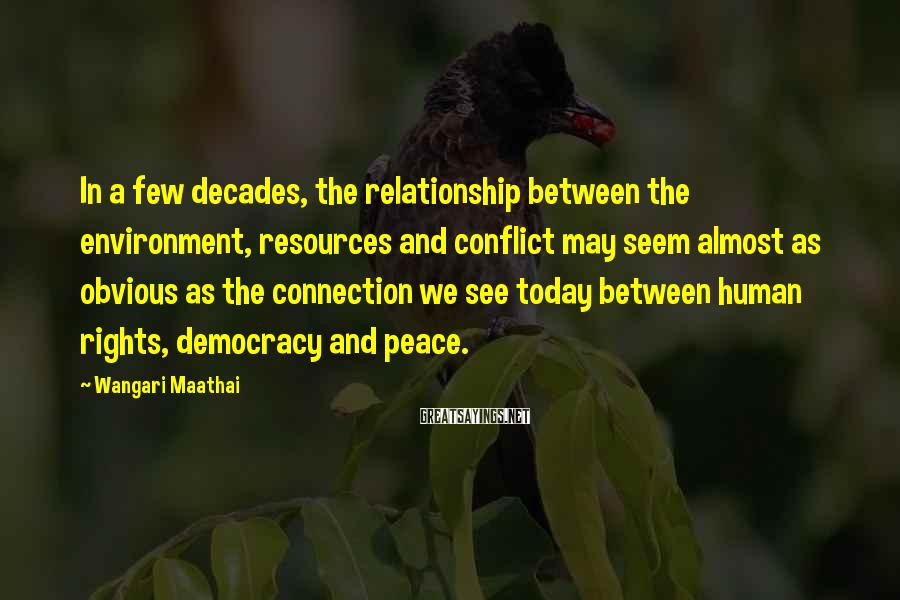 Wangari Maathai Sayings: In a few decades, the relationship between the environment, resources and conflict may seem almost
