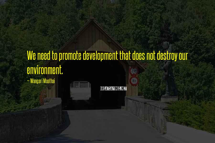 Wangari Maathai Sayings: We need to promote development that does not destroy our environment.
