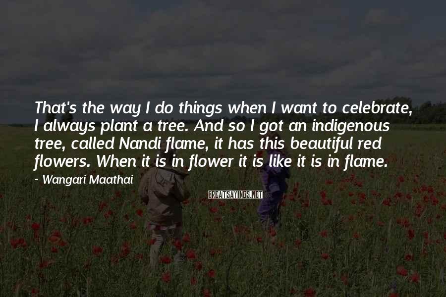 Wangari Maathai Sayings: That's the way I do things when I want to celebrate, I always plant a