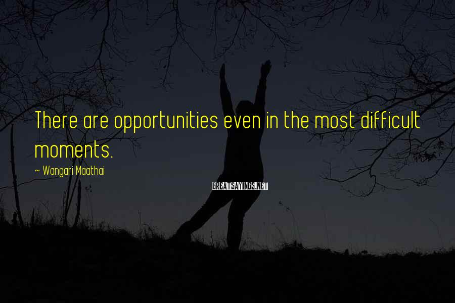 Wangari Maathai Sayings: There are opportunities even in the most difficult moments.