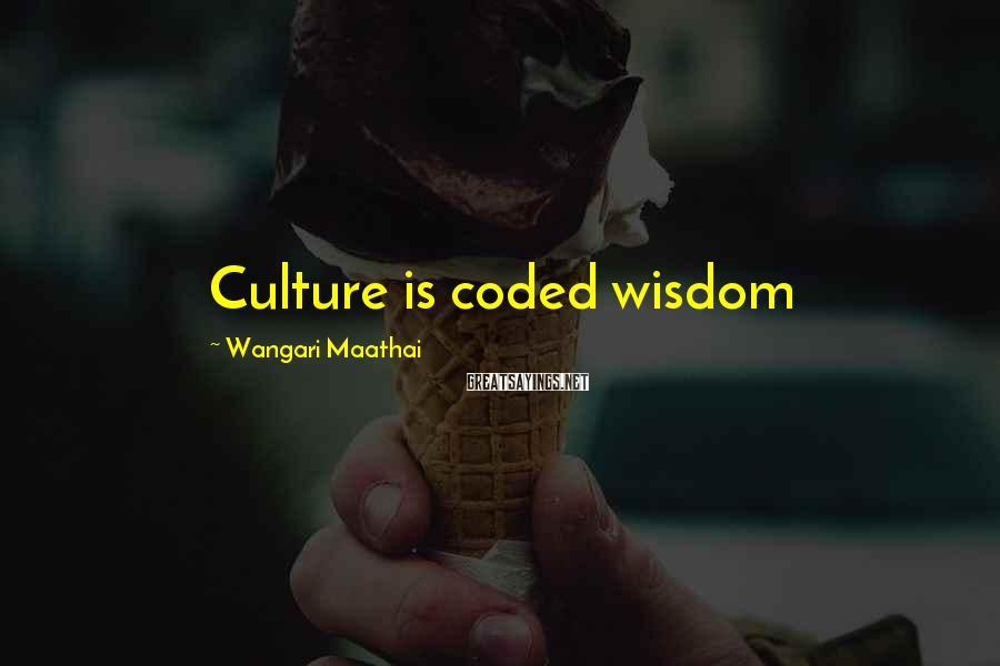 Wangari Maathai Sayings: Culture is coded wisdom