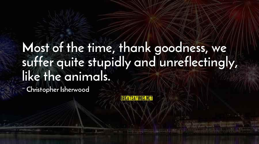 Wanting Something Better Sayings By Christopher Isherwood: Most of the time, thank goodness, we suffer quite stupidly and unreflectingly, like the animals.