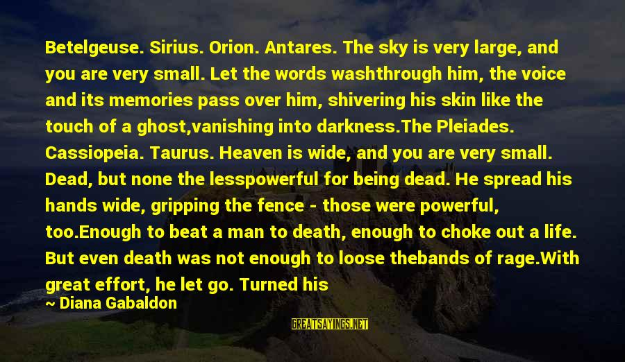 Wash My Hands Of You Sayings By Diana Gabaldon: Betelgeuse. Sirius. Orion. Antares. The sky is very large, and you are very small. Let