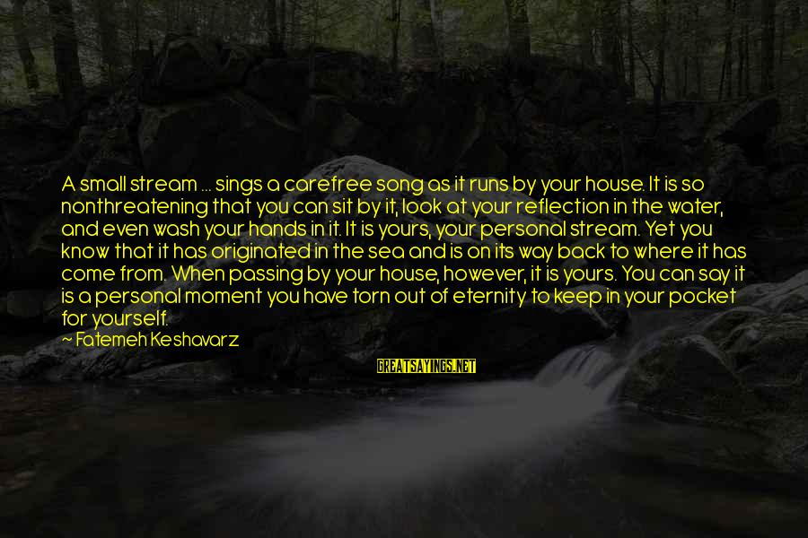 Wash My Hands Of You Sayings By Fatemeh Keshavarz: A small stream ... sings a carefree song as it runs by your house. It