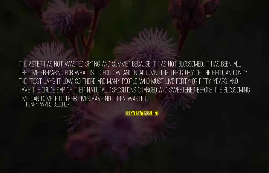 Wasted Time Sayings By Henry Ward Beecher: The aster has not wasted spring and summer because it has not blossomed. It has