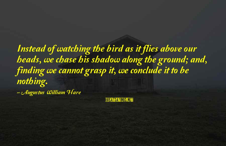 Watching From Above Sayings By Augustus William Hare: Instead of watching the bird as it flies above our heads, we chase his shadow