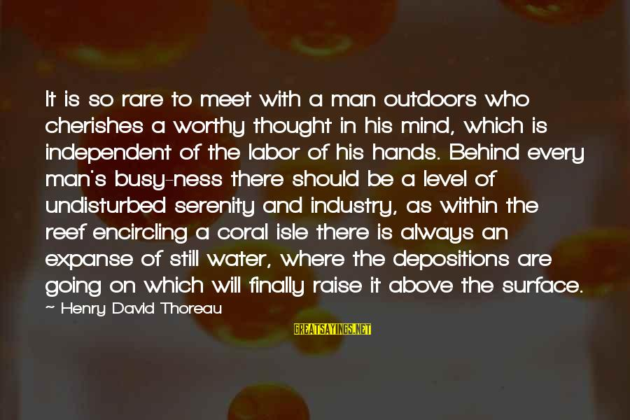 Water Serenity Sayings By Henry David Thoreau: It is so rare to meet with a man outdoors who cherishes a worthy thought