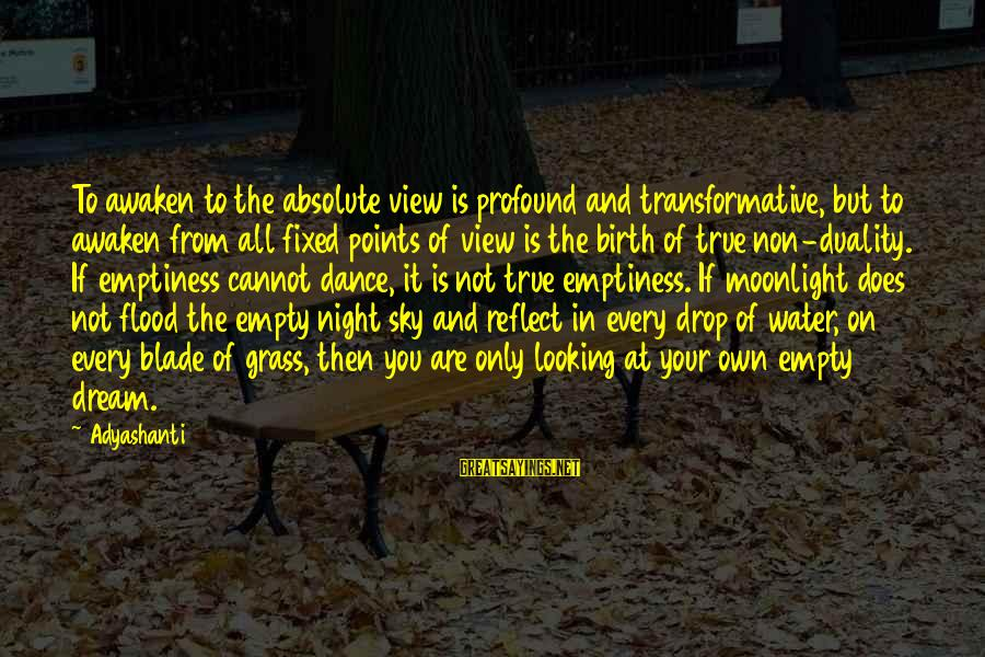 Water View Sayings By Adyashanti: To awaken to the absolute view is profound and transformative, but to awaken from all