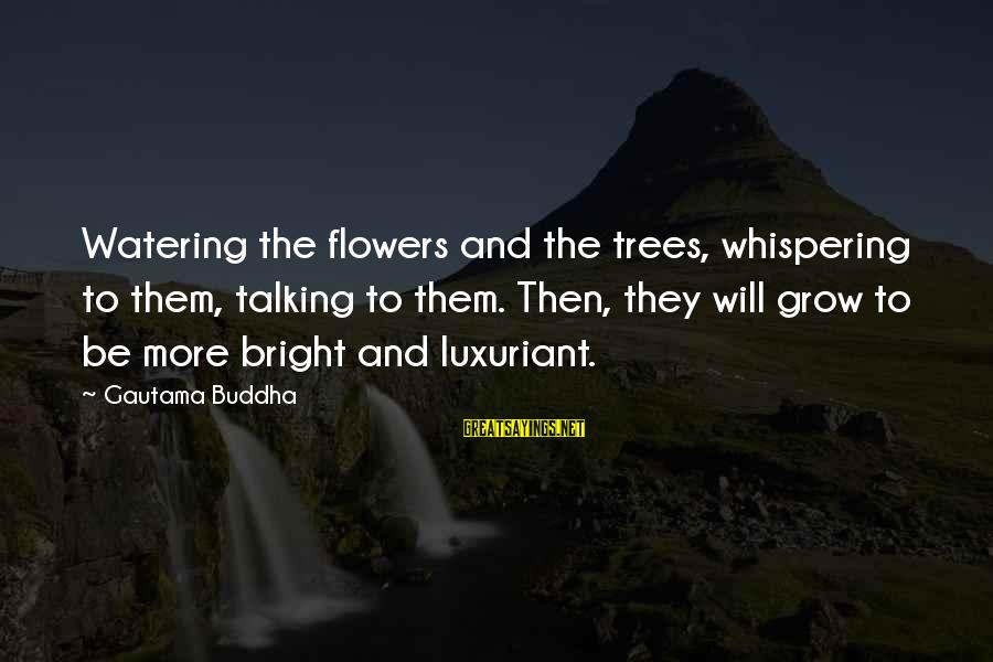 Watering Sayings By Gautama Buddha: Watering the flowers and the trees, whispering to them, talking to them. Then, they will