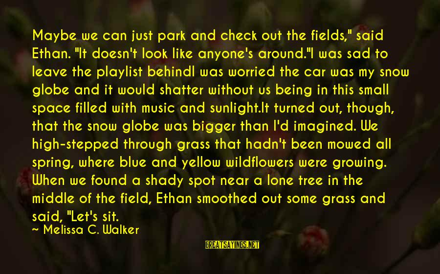 """We Are All Under The Same Sky Sayings By Melissa C. Walker: Maybe we can just park and check out the fields,"""" said Ethan. """"It doesn't look"""