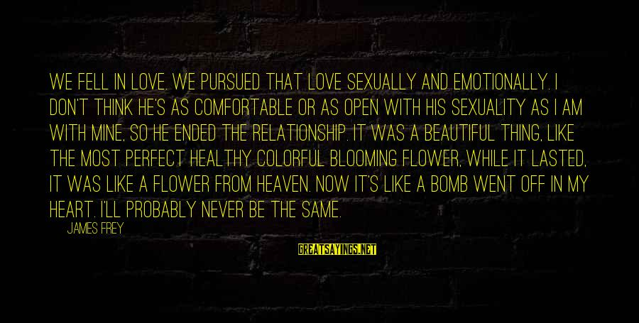 We Fell In Love Sayings By James Frey: We fell in love. We pursued that love sexually and emotionally. I don't think he's