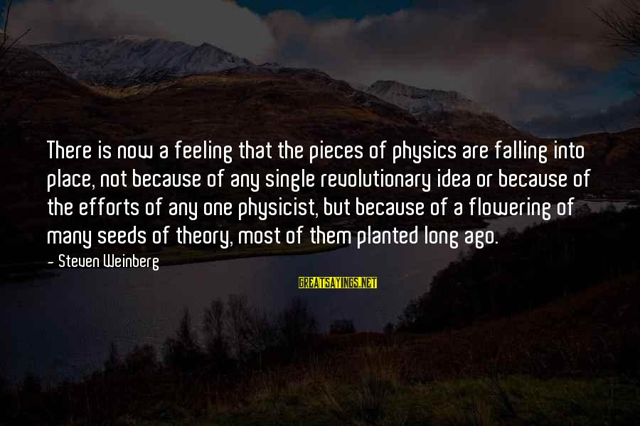 Weinberg Steven Sayings By Steven Weinberg: There is now a feeling that the pieces of physics are falling into place, not
