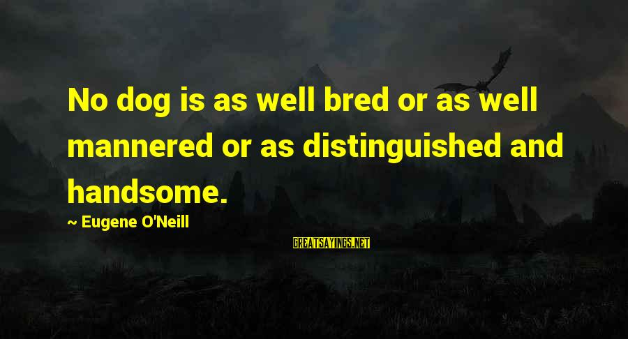 Well Bred Sayings By Eugene O'Neill: No dog is as well bred or as well mannered or as distinguished and handsome.