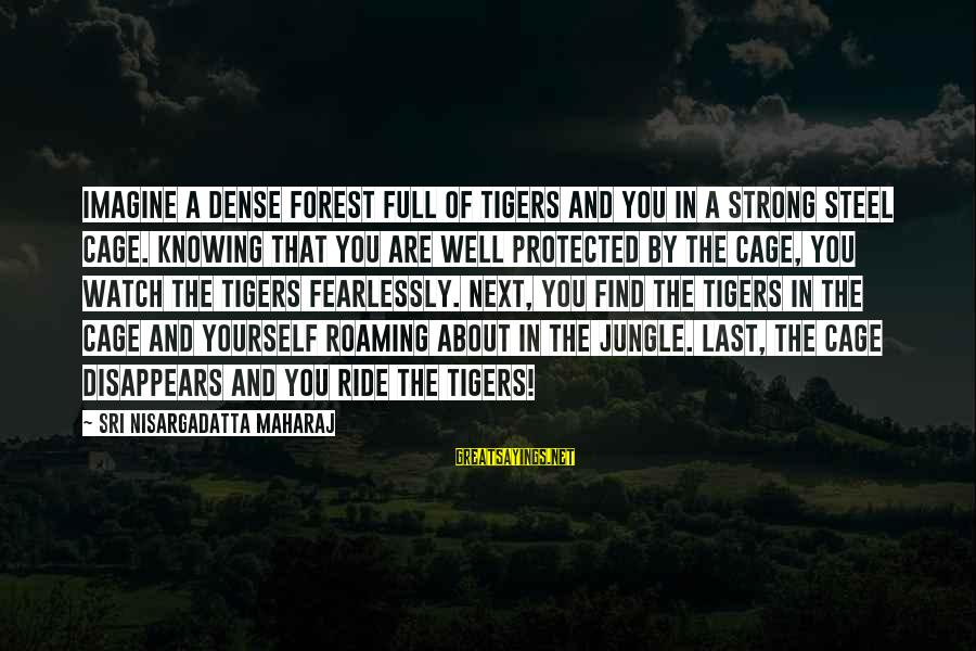 Well Protected Sayings By Sri Nisargadatta Maharaj: Imagine a dense forest full of tigers and you in a strong steel cage. Knowing