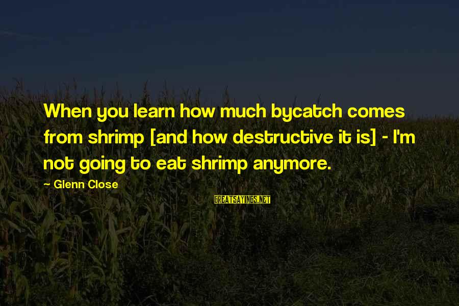 We're Not Close Anymore Sayings By Glenn Close: When you learn how much bycatch comes from shrimp [and how destructive it is] -