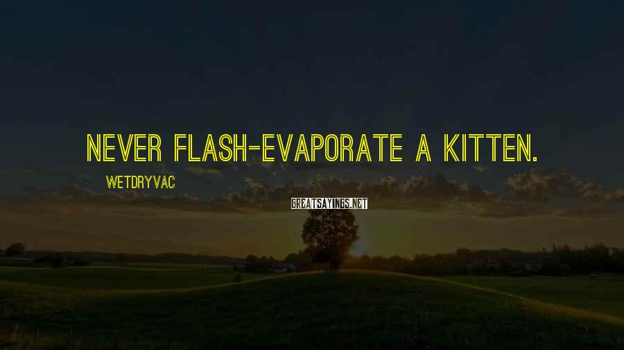 Wetdryvac Sayings: Never flash-evaporate a kitten.