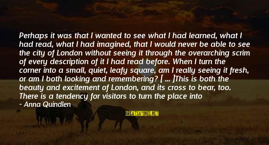 What Is Beauty Sayings By Anna Quindlen: Perhaps it was that I wanted to see what I had learned, what I had