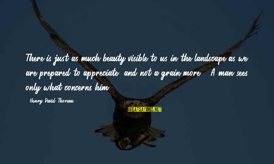What Is Beauty Sayings By Henry David Thoreau: There is just as much beauty visible to us in the landscape as we are