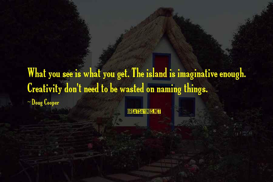 What You See On The Outside Sayings By Doug Cooper: What you see is what you get. The island is imaginative enough. Creativity don't need
