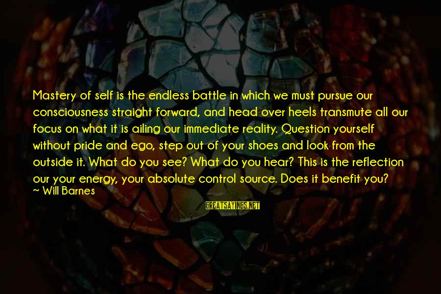 What You See On The Outside Sayings By Will Barnes: Mastery of self is the endless battle in which we must pursue our consciousness straight