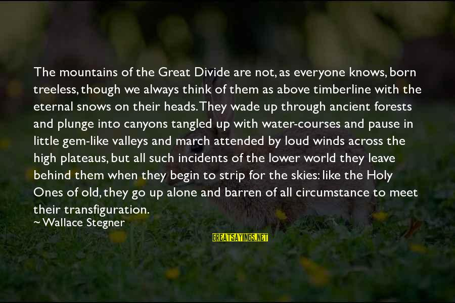 When We Are Alone Sayings By Wallace Stegner: The mountains of the Great Divide are not, as everyone knows, born treeless, though we